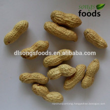 High Quality New Crop Ground Nuts