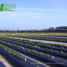 Fábricas chinas en China al mejor precio Rollos de película plástica para la biodegradación de la agricultura