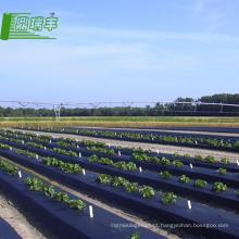 Fábricas chinesas na China o melhor preço Rolos de filme plástico para biodegradação agrícola
