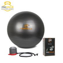 Fitness Exercises PVC Gym Yoga Ball