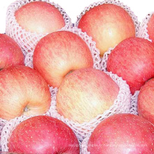 Nouvelle Crop Chinese FUJI Apple