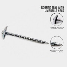 Hot Selling Nail with Big Heavy Head with Nice Price
