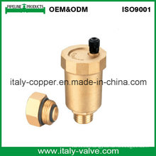 Customized Quality Brass Air Vent Valve (IC-3002)