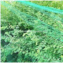 Plastic Agricultural Fruit Bird Mesh