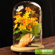 Glass Dome Display Case with Wood Base