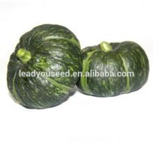 MPU08 БК нет.4 грубую гибрид зеленые семена тыквы, семена овощных культур