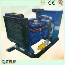 Générateur d'énergie électrique à gaz électrique de 30kw économique à vendre avec Ce ISO