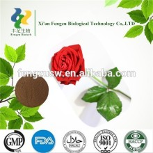 Hot sale best quality pure rose flower extract