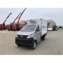 Manual 4x2 Diesel Froze Reefer Van