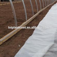 Greenhouse UV Plastics Sheet