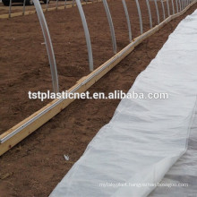 Greenhouse UV Plastics Sheet