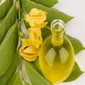 высококачественное эфирное масло иланг для ухода за волосами