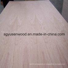 Madeira compensada da categoria da mobília da madeira compensada do folheado do vidoeiro do folheado da folhosa 4 * 8