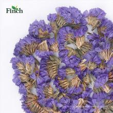 Finch New Arrival Detox Herbal Chá Miosótis Seca Flor Saquinho De Chá