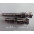Stainless Steel Hex Cap Screw