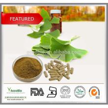 High Quality Ginkgo Biloba Leaf Extract Powder in Bulk