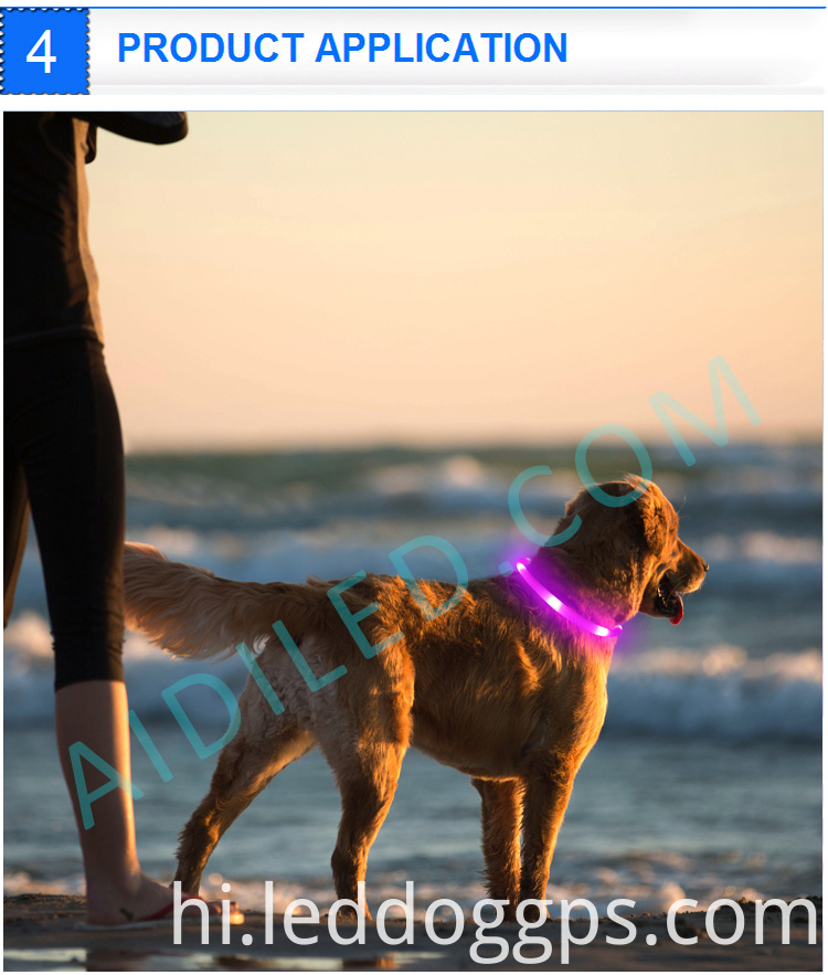 Dog Led Pet Safety Collar