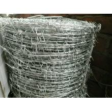 Electro e Hot Dipped Hot Dipped Barbe Wire (fabricante especializado)