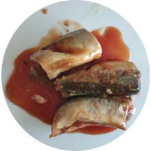 Peixe de lata de cavala em conserva em molho de tomate