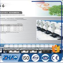 421 Cadena puntada / toalla / Chenille máquina de bordar precio barato