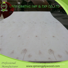 Linyi Qimeng Suministro de madera contrachapada de álamo de 3 mm con buena calidad