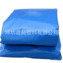 China PE Tarpaulin, Canvas Tarpaulin, PE Tarpaulin Fabric/PE Tarpaulin Sheet Tarpaulin Cover
