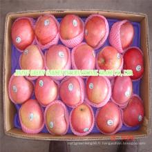 Pomme de Qingguan