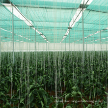 Hdpe vegetable nursery sun shade net