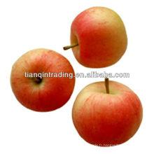 pomme de fuji pour le Moyen-Orient