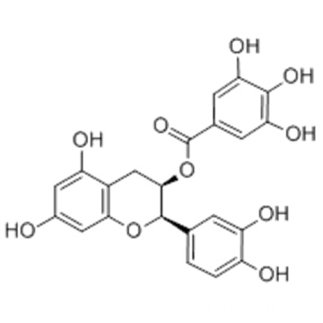 (-)-Epicatechin gallate CAS 1257-08-5