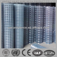 High quality & standard welded wire mesh netting ( shock price )