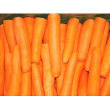 Zanahoria china preminum