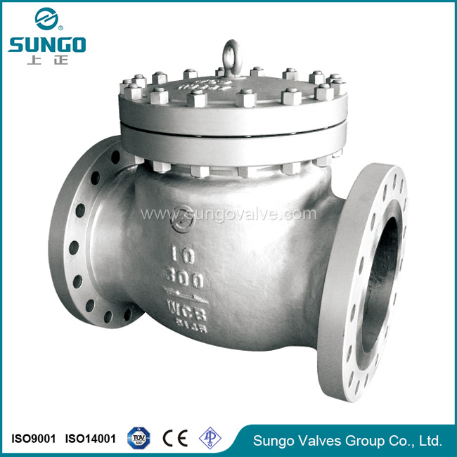 No return check valve