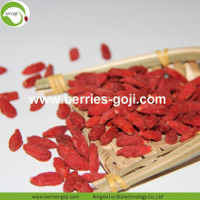 Factory Supply Fruits Nutrition Neue Ernte Goji Berry