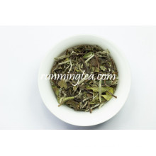 Antioxidant Chinese White Tea Benefits