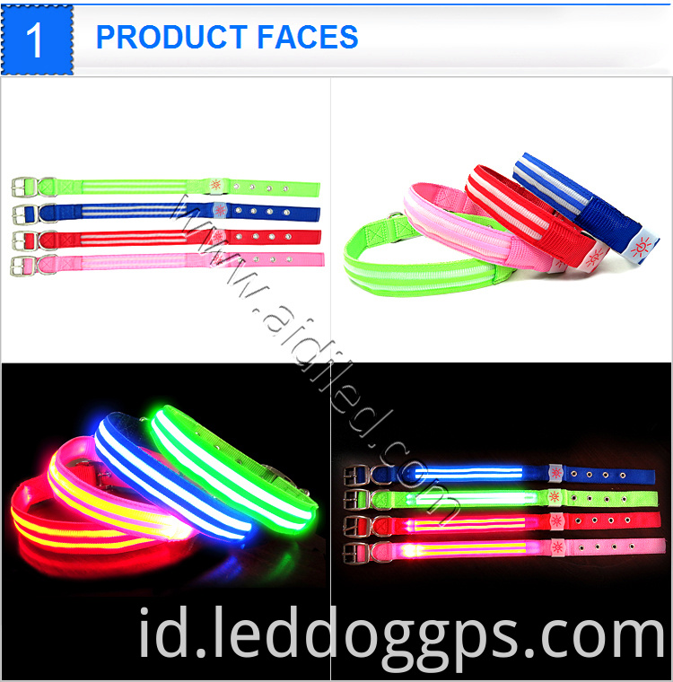 Light Up Collar And Leash