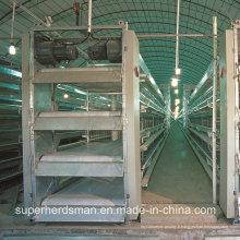 Équipement automatique de hangar de contrôle de volaille pour la couche et le gril