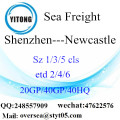 Shenzhen Port Sea Freight Shipping ke Newcastle