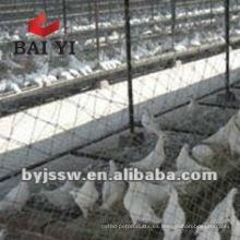Racing Pigeon Breeding Cage