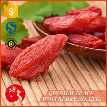 Free Sample good quality dried organic goji berry