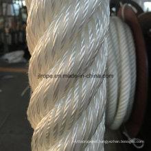 6-Strand Atlas Rope / Nylon Rope