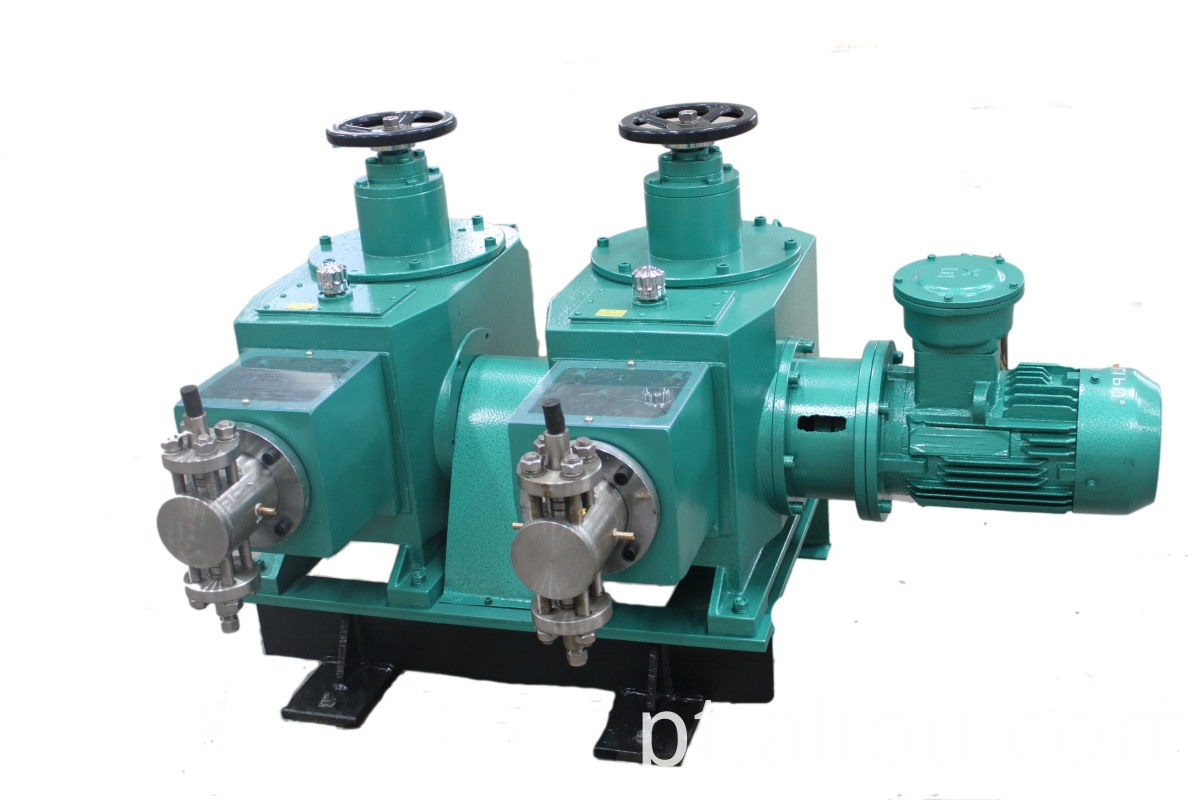 Double Head Plunger Dosing Pump