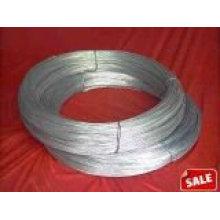 BWG 21 Electric galvanized wire