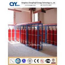 Cylindre de gaz anti-incendie en acier inoxydable à dioxyde de carbone comprimé avec différentes capacités