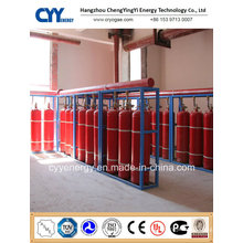 Compressed Carbon Dioxide Seamless Steel Fire Fighting Gas Cylinder with Different Capacities
