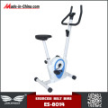 Professional Design Body fit Upright Belt Driven Bike