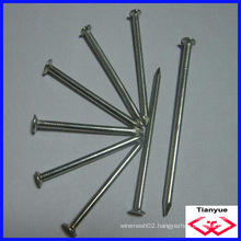 Common Nails (TYE-762)