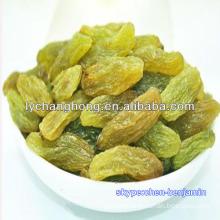All types of Raisins