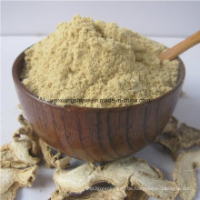 Trockenes Ginger Powder, Ingwer Slice