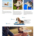 Haustierkühlmatte Physikalische Hundekühlmatte